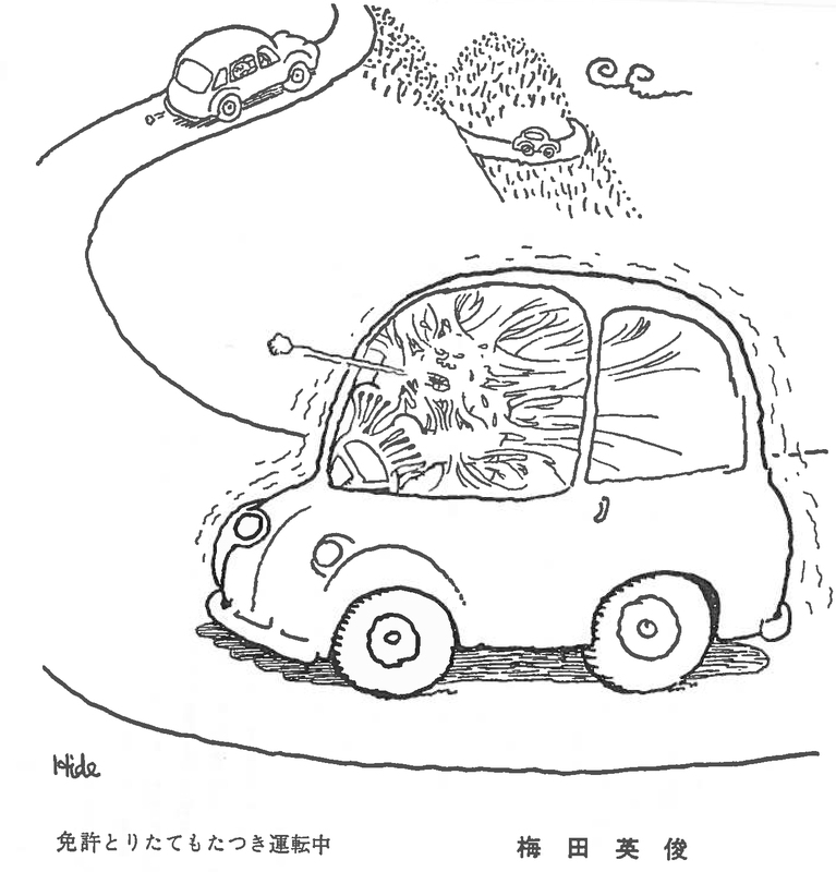 the asia pacific journal japan focus 2009 Mercury Milan Car figure 6 figure 7