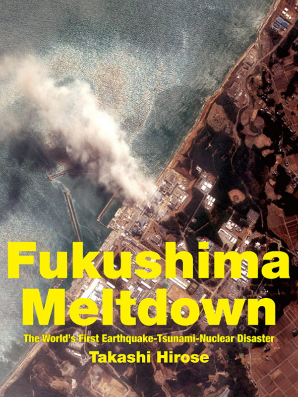 Will the nuclear meltdown in japan ruin the future of all nuclear engineers?