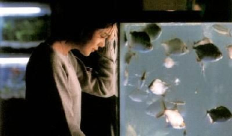 Yi Myeong-hyeon with her fish tank