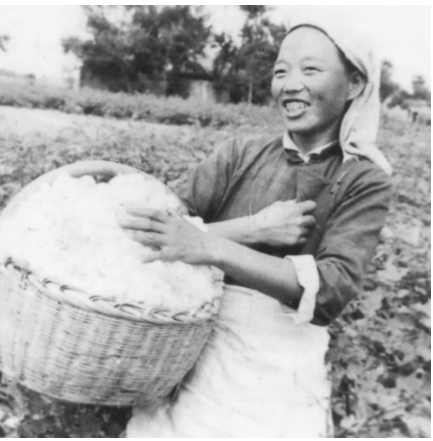 Women and China's Socialist Construction, 1949–78 | The Asia-Pacific